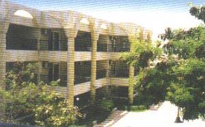 Отель построен 2-х этажными корпусами и одноэтажными бунгало: 192 standart rooms (макс