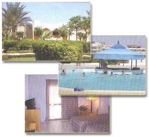 Фоторепортаж из отеля aladdin beach resort